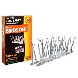 bird-spikes
