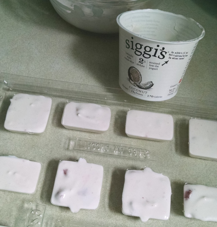 yogurt-mold